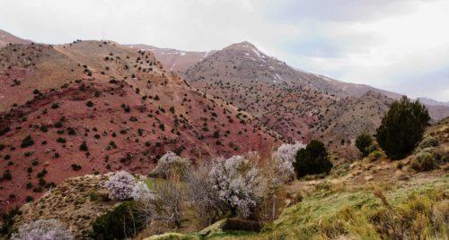 """Le """"tourisme vert"""", atout majeur pour Ouarzazate, et le Maroc"""