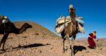La transhumance au Maroc avec les nomades Aït Atta