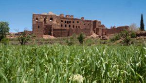 La vieille casbah de Telouet est laissée à l'abandon alors qu'elle porte la mémoire de la région de Ouarzazate
