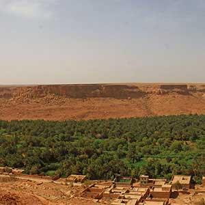 L'oasis d'Errachidia est un îlot de fraicheur dans les environs désertiques
