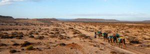 Découvrir le Maroc comme au temps des caravanes d'autrefois