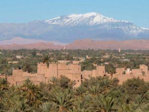 La palmeraie de Skoura avec à l'horizon les montagnes enneigées du Haut Atlas