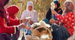 Le tapis Aït Ouaouzguite, flambeau de l'art des femmes du Siroua