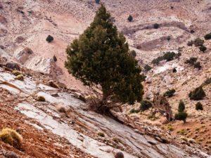Les beautés naturelles de la région Sud Est du Maroc