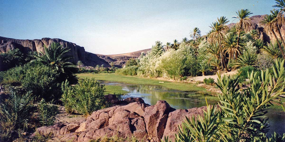 Oasis de Fint près d'Ouarzazate