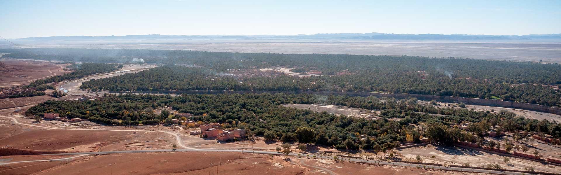 Palmeraie au Sud Est du Maroc