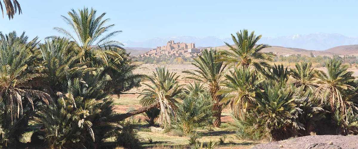 La kasbah de Tifoultoute près d'Ouarzazate