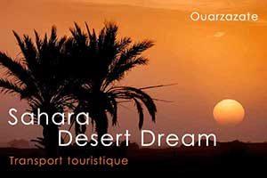 Sahara Desert Dream
